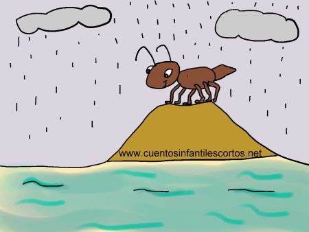 Short-stories-Tip-the-curious-ant
